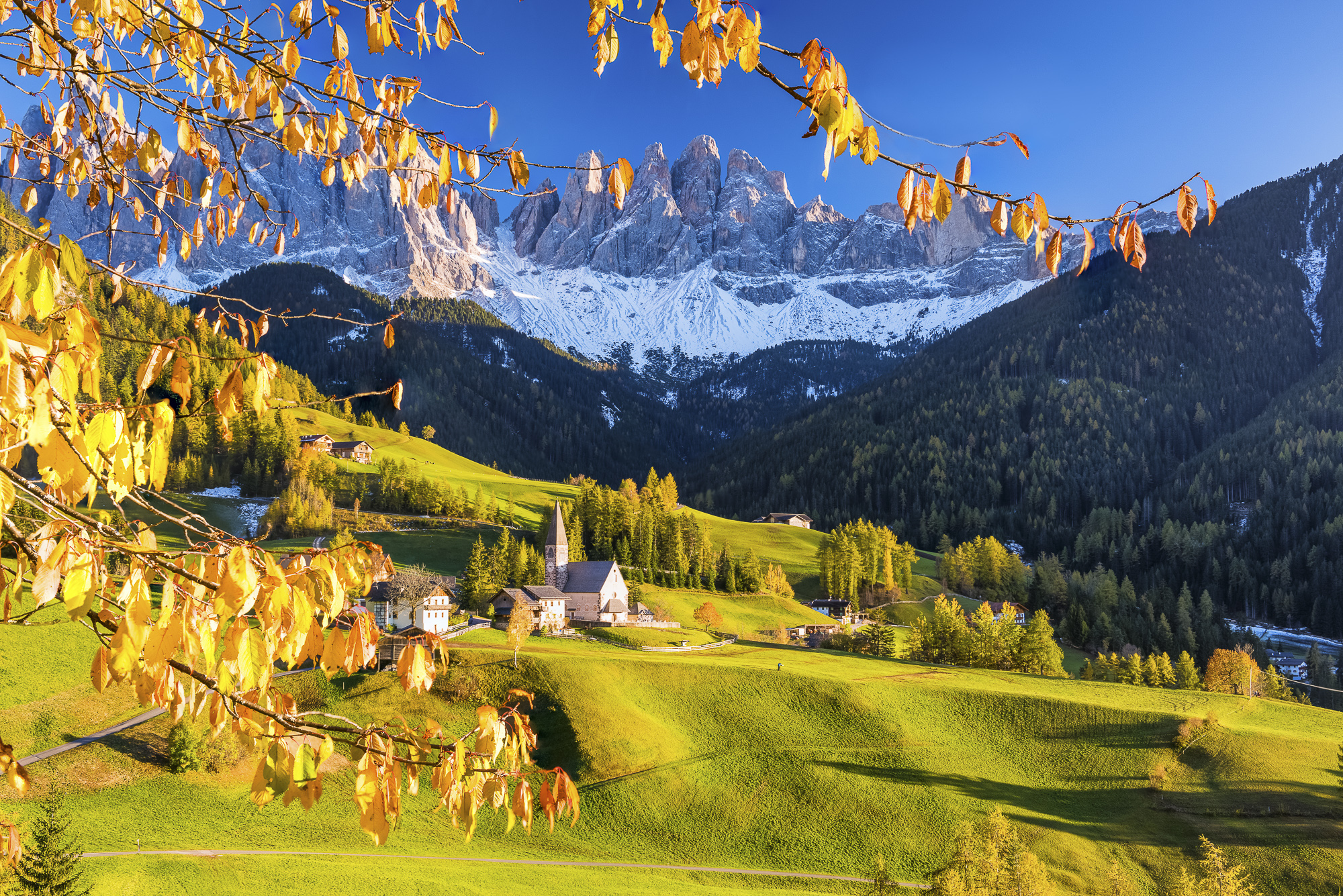 St. Magdalena in Autumn, Val di Funes, Dolomites, South Tyrol, Italy